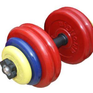 ГРЦ-25 Гантель разборная 25 кг цветная